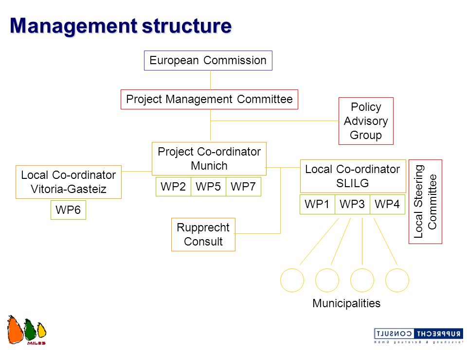 Management structure European Commission Project Management Committee Policy Advisory Group Project Co-ordinator Munich WP2WP5WP7 WP4WP3WP1 Local Co-o