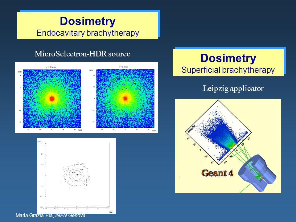 Maria Grazia Pia, INFN Genova Leipzig applicator MicroSelectron-HDR source Dosimetry Endocavitary brachytherapy Dosimetry Endocavitary brachytherapy D