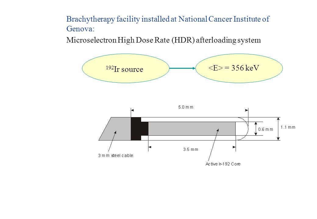 Brachytherapy facility installed at National Cancer Institute of Genova: Microselectron High Dose Rate (HDR) afterloading system 192 Ir source = 356 k