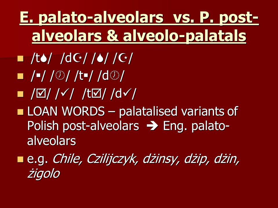 E. palato-alveolars vs. P. post- alveolars & alveolo-palatals /t / /d / / / / / /t / /d / / / / / / / / / /t / /d / / / / / /t / /d / LOAN WORDS – pal