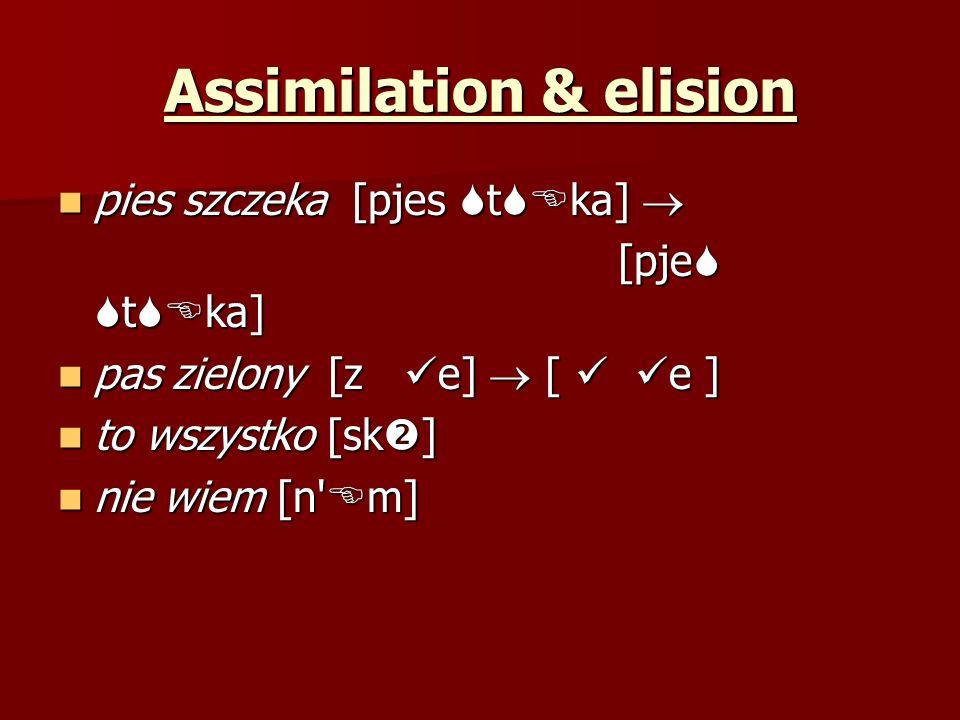 Assimilation & elision pies szczeka [pjes t ka] pies szczeka [pjes t ka] [pje t ka] [pje t ka] pas zielony [z e] [ e ] pas zielony [z e] [ e ] to wszy