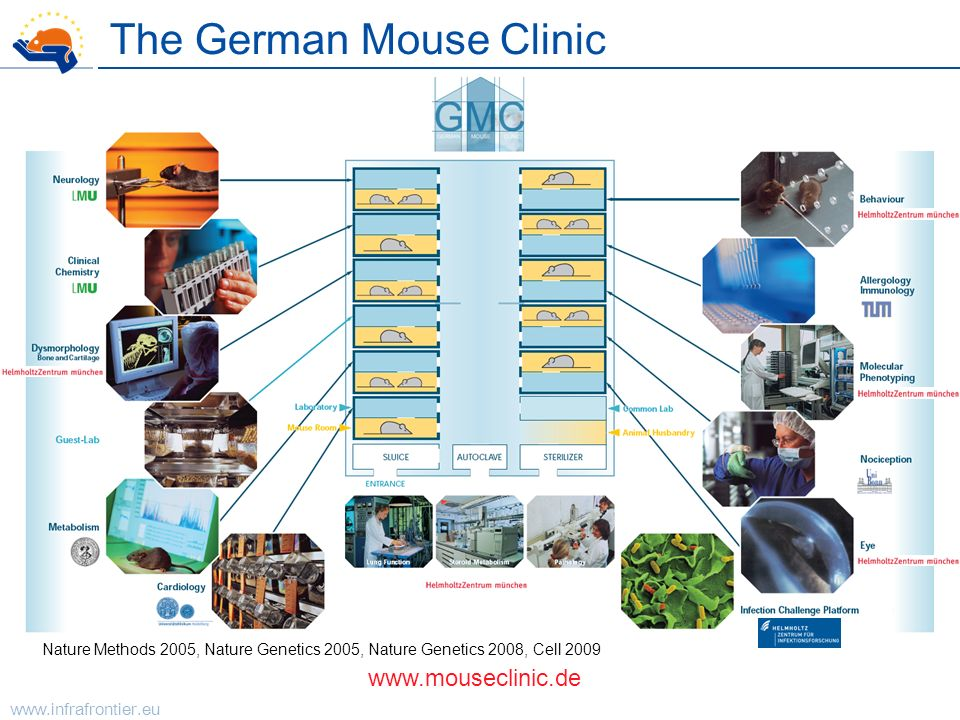 www.infrafrontier.eu The German Mouse Clinic www.mouseclinic.de Nature Methods 2005, Nature Genetics 2005, Nature Genetics 2008, Cell 2009