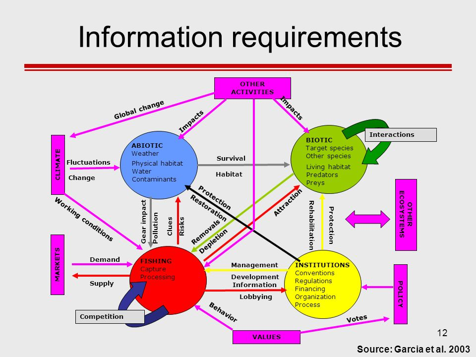 12 Information requirements INSTITUTIONS Conventions Regulations Financing Organization Process OTHER ACTIVITIES VALUES CLIMATE OTHER ECOSYSTEMS MARKE