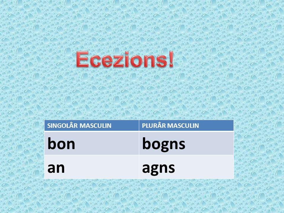 SINGOLÂR MASCULINPLURÂR MASCULIN bonbogns anagns