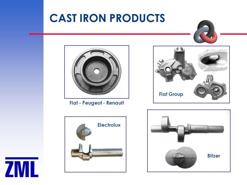 CAST IRON PRODUCTS Fiat - Peugeot - Renault Fiat Group Bitzer Electrolux