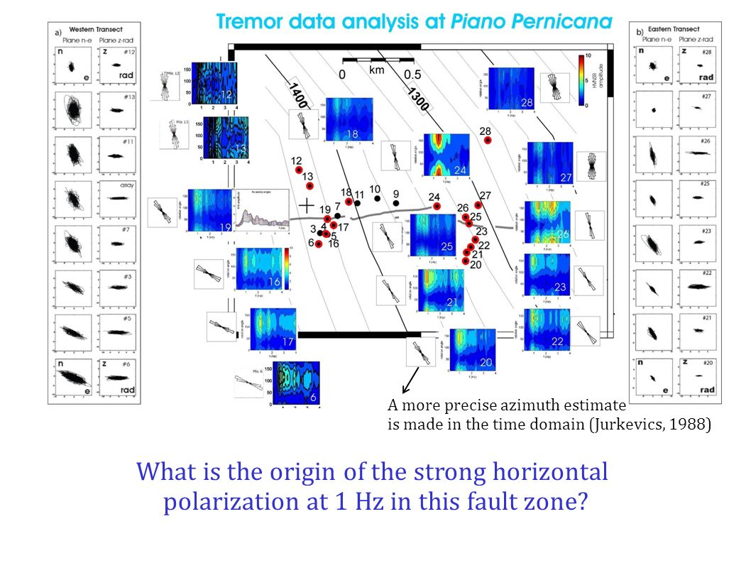 What is the origin of the strong horizontal polarization at 1 Hz in this fault zone.