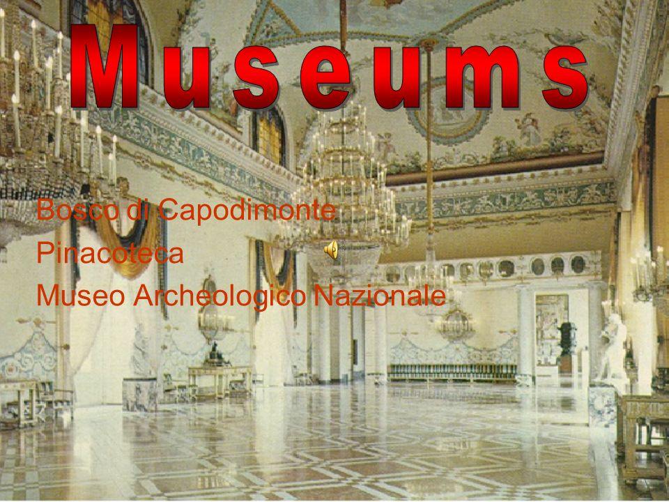 Bosco di Capodimonte Pinacoteca Museo Archeologico Nazionale