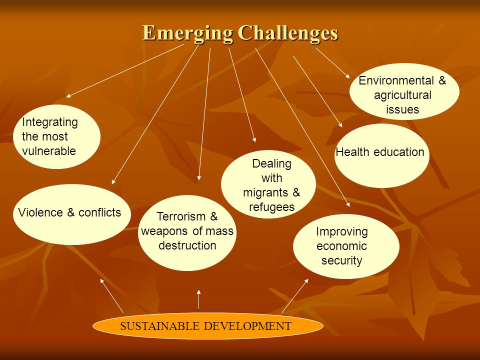 Emerging Challenges Integrating the most vulnerable Violence & conflicts Terrorism & weapons of mass destruction Dealing with migrants & refugees Improving economic security Health education Environmental & agricultural issues SUSTAINABLE DEVELOPMENT