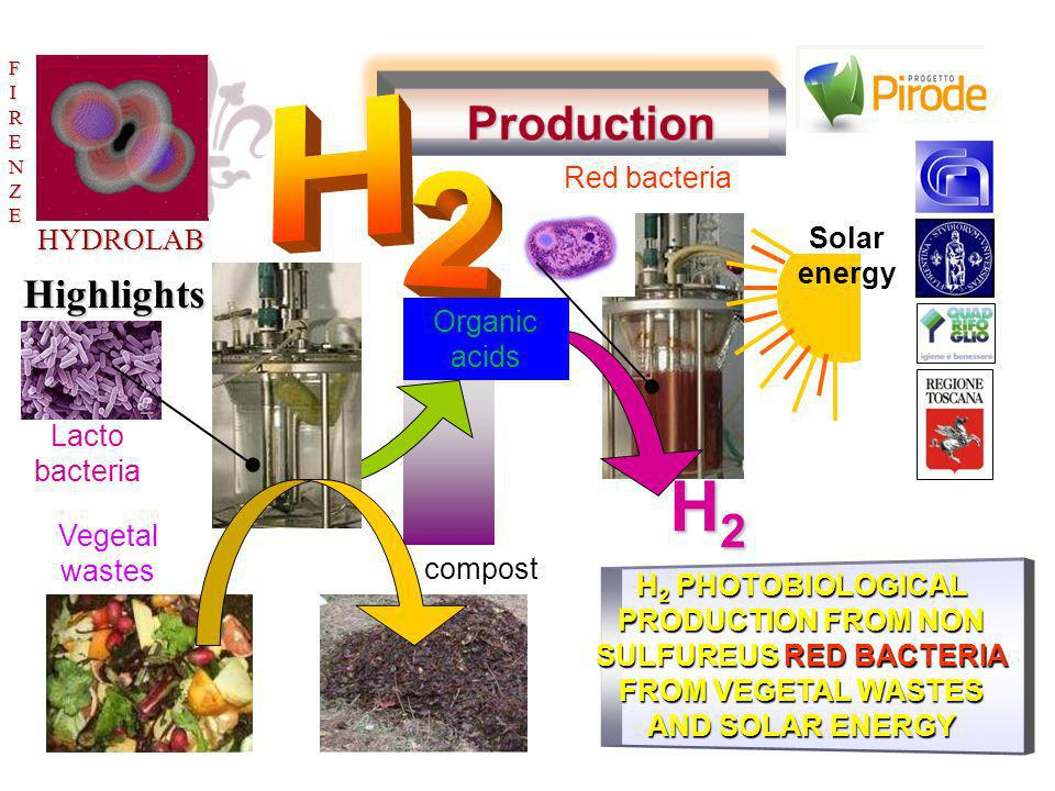 HYDROLABF FFIRENZEIRENZEFFIRENZEIRENZE H 2 PHOTOBIOLOGICAL PRODUCTION FROM NON SULFUREUS RED BACTERIA FROM VEGETAL WASTES AND SOLAR ENERGY Vegetal was