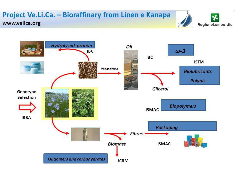 Biolubricants Polyols ω-3 IBC IBBA Genotype Selection IBC Hydrolyzed protein Biomass ICRM Oligomers and carbohydrates Oil Pressatura ISTM Glicerol ISM