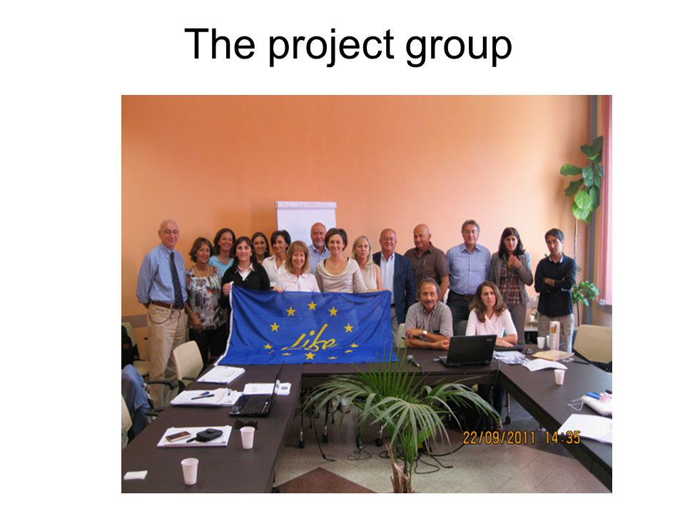 The project group