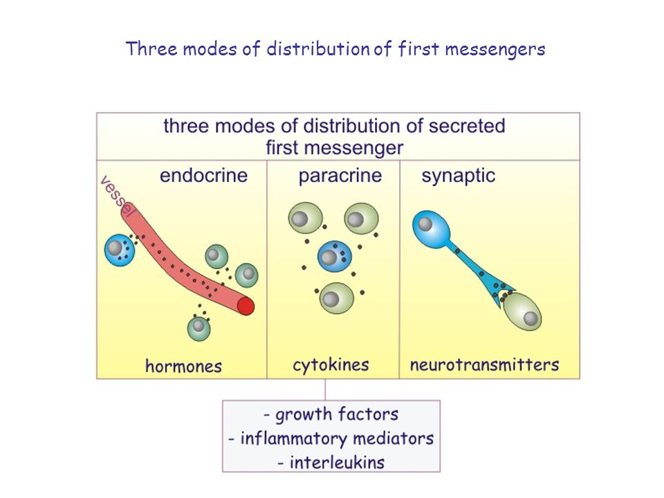 Three modes of distribution of first messengers