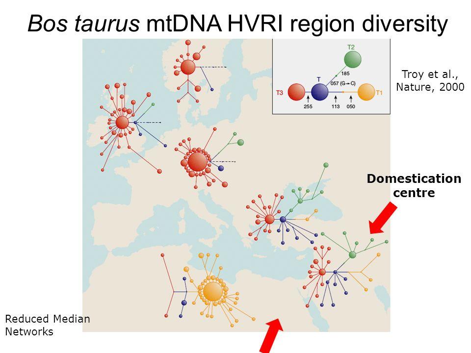 Domestication centre Bos taurus mtDNA HVRI region diversity Reduced Median Networks Troy et al., Nature, 2000