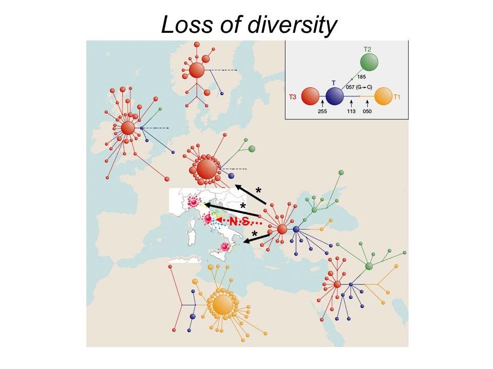 Loss of diversity * * * N.S.