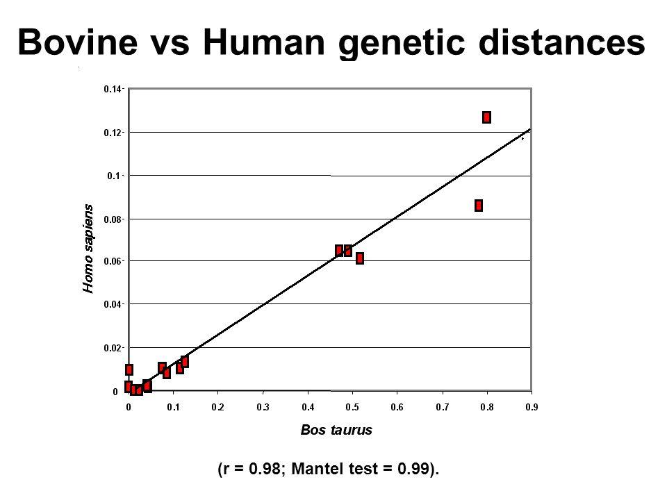Bovine vs Human genetic distances (r = 0.98; Mantel test = 0.99).