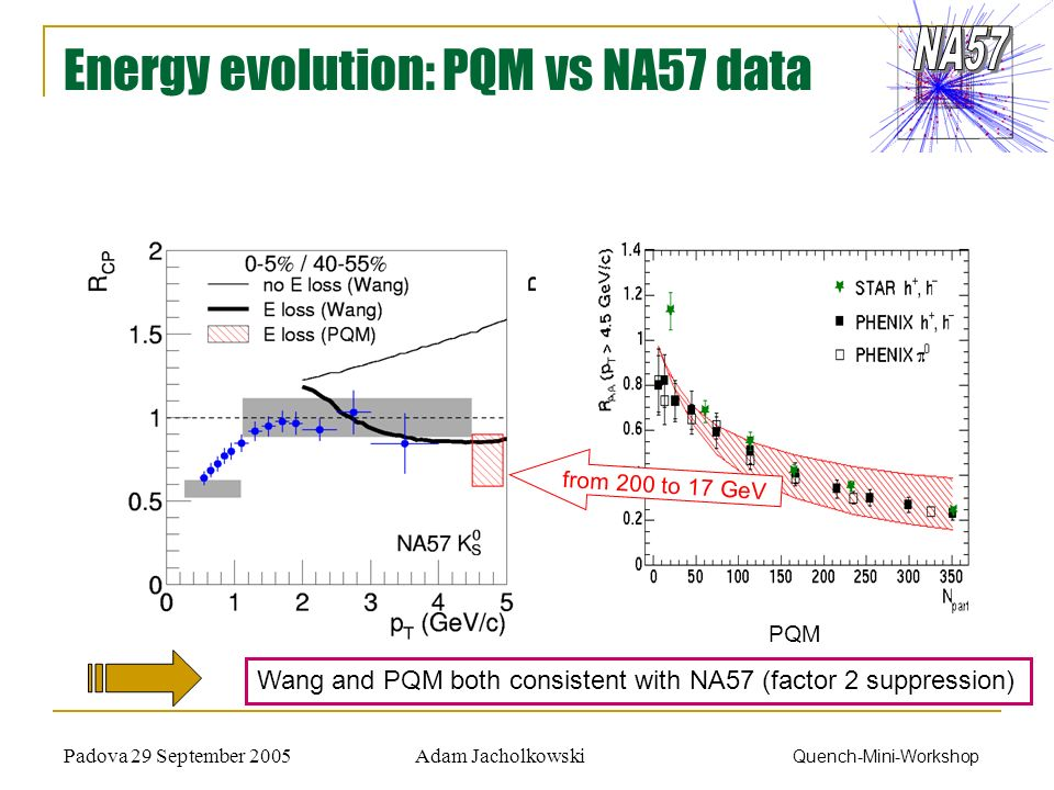 Adam JacholkowskiPadova 29 September 2005 Quench-Mini-Workshop Energy evolution: PQM vs NA57 data PQM from 200 to 17 GeV Wang and PQM both consistent with NA57 (factor 2 suppression)