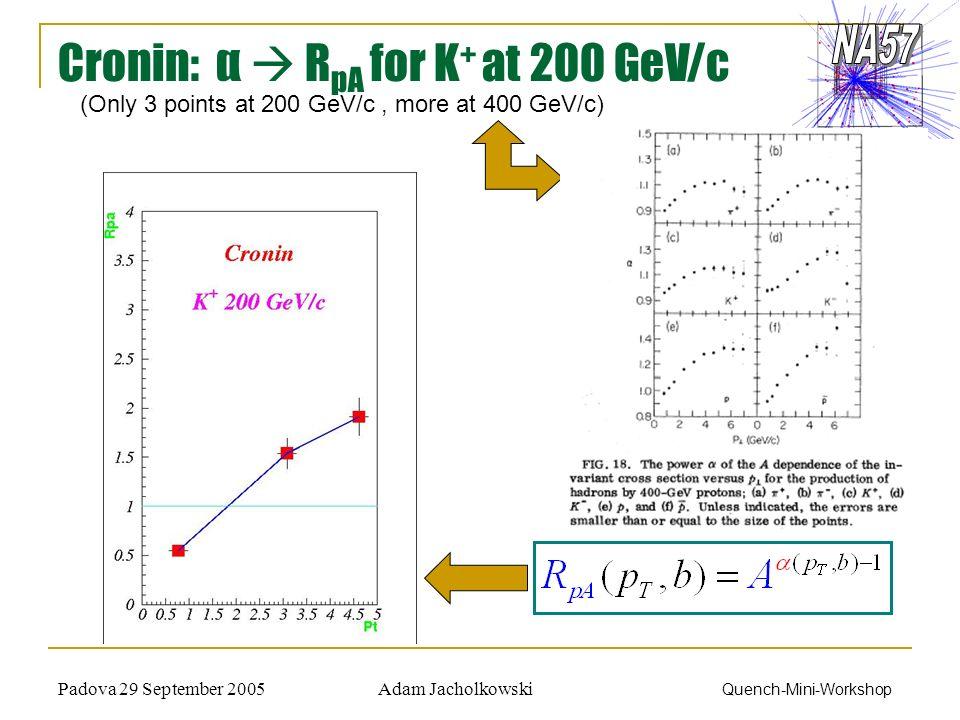 Adam JacholkowskiPadova 29 September 2005 Quench-Mini-Workshop Cronin: α R pA for K + at 200 GeV/c (Only 3 points at 200 GeV/c, more at 400 GeV/c)