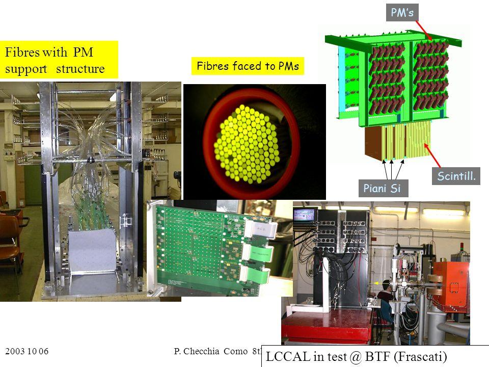 2003 10 06P. Checchia Como 8th ICATPP20 PMs Scintill.