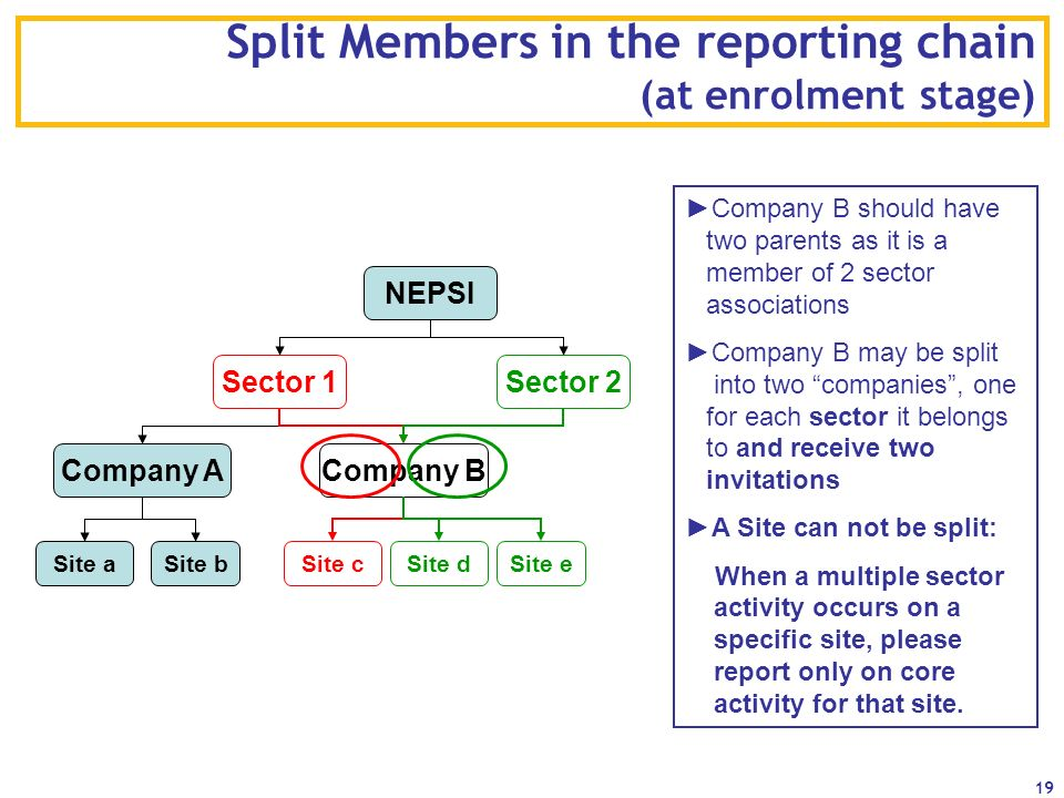 19 Split Members in the reporting chain (at enrolment stage) NEPSI Sector 1Sector 2 Company ACompany B Site aSite bSite cSite d Company B should have