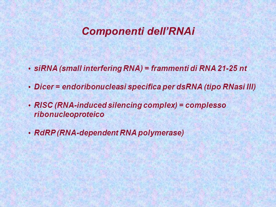 Componenti dellRNAi siRNA (small interfering RNA) = frammenti di RNA 21-25 nt Dicer = endoribonucleasi specifica per dsRNA (tipo RNasi III) RISC (RNA-