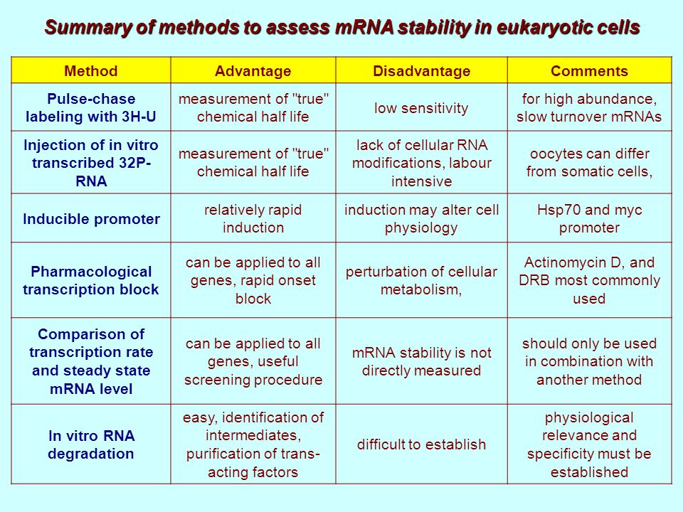 Summary of methods to assess mRNA stability in eukaryotic cells MethodAdvantageDisadvantageComments Pulse-chase labeling with 3H-U measurement of