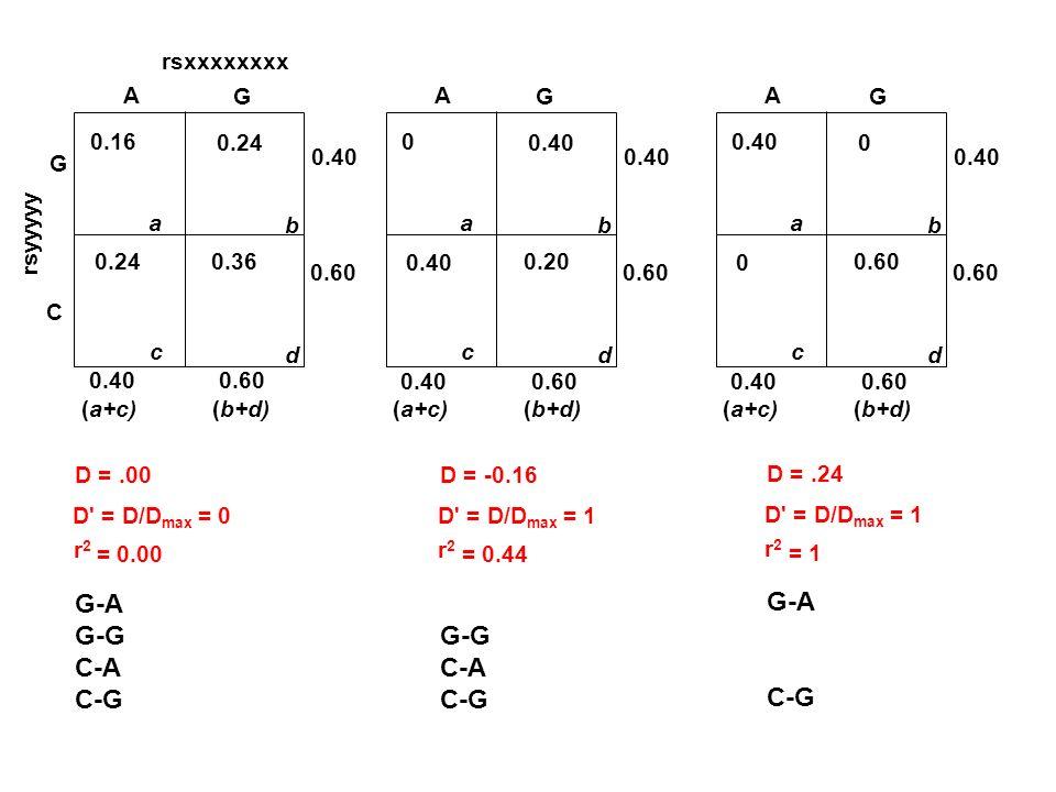 rsxxxxxxxx rsyyyyy G C A G 0.16 a 0.24 b c d 0.36 0.24 0.40 (a+c)(b+d) 0.400.60 D =.00 D' = D/D max = 0 r2r2 = 0.00 A G 0 a 0.40 b c d 0.20 0.40 (a+c)