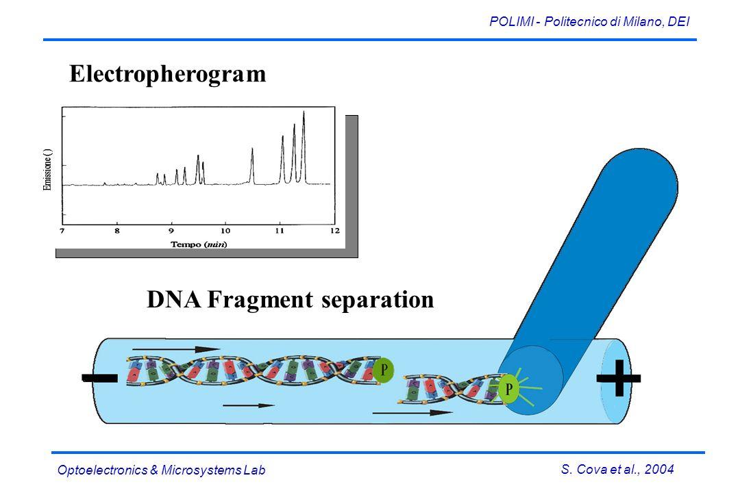 S. Cova et al., 2004 POLIMI - Politecnico di Milano, DEI Optoelectronics & Microsystems Lab DNA Fragment separation Electropherogram