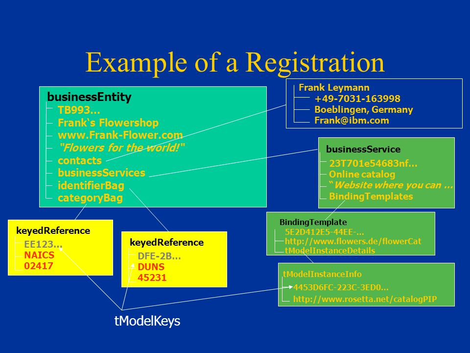 Example of a Registration businessEntity TB993… Franks Flowershop www.Frank-Flower.com Flowers for the world.