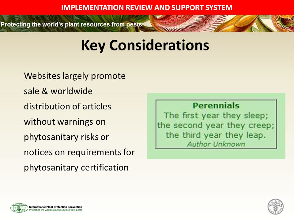 IMPLEMENTATION REVIEW AND SUPPORT SYSTEM Key Considerations Websites largely promote sale & worldwide distribution of articles without warnings on phytosanitary risks or notices on requirements for phytosanitary certification