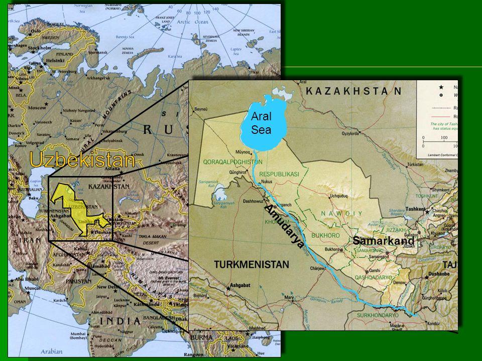 Aral Sea Amudarya Samarkand