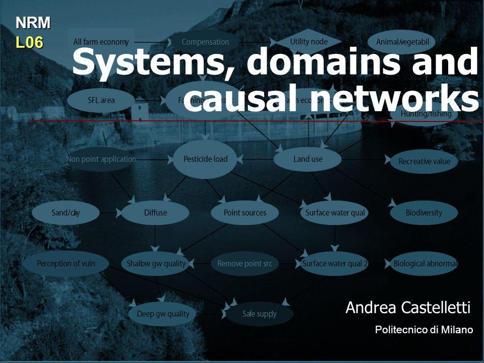 Systems, domains and causal networks Andrea Castelletti Politecnico di Milano NRML06