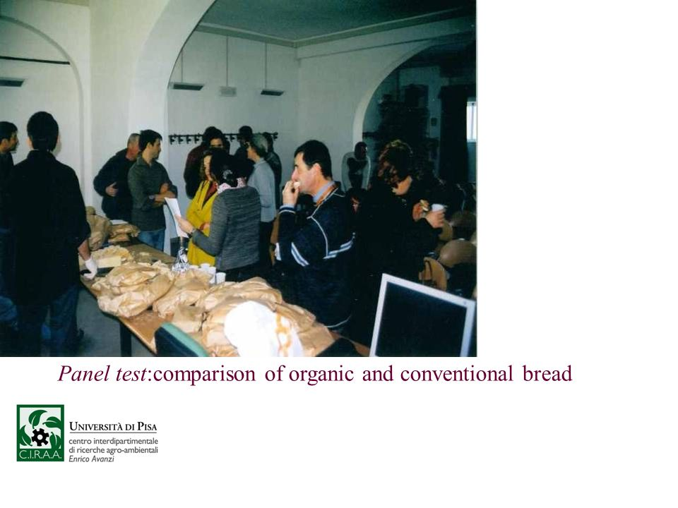 Panel test:comparison of organic and conventional bread