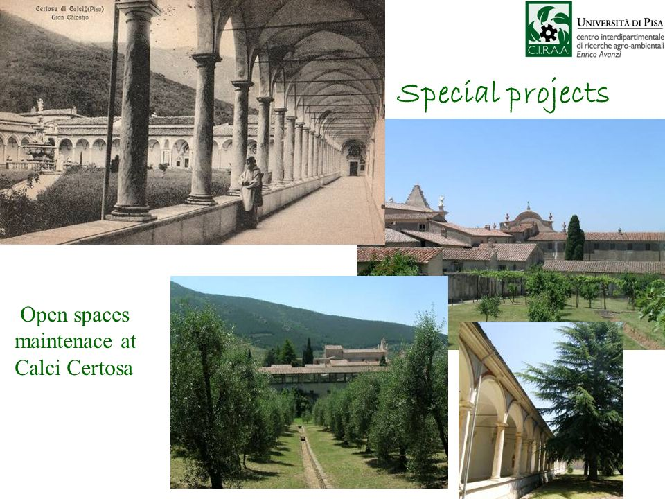 Special projects Open spaces maintenace at Calci Certosa