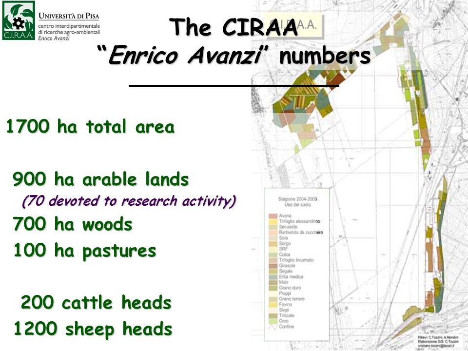 The CIRAAEnrico Avanzi numbers 1700 ha total area 900 ha arable lands 900 ha arable lands (70 devoted to research activity) (70 devoted to research activity) 700 ha woods 700 ha woods 100 ha pastures 100 ha pastures 200 cattle heads 200 cattle heads 1200 sheep heads 1200 sheep heads