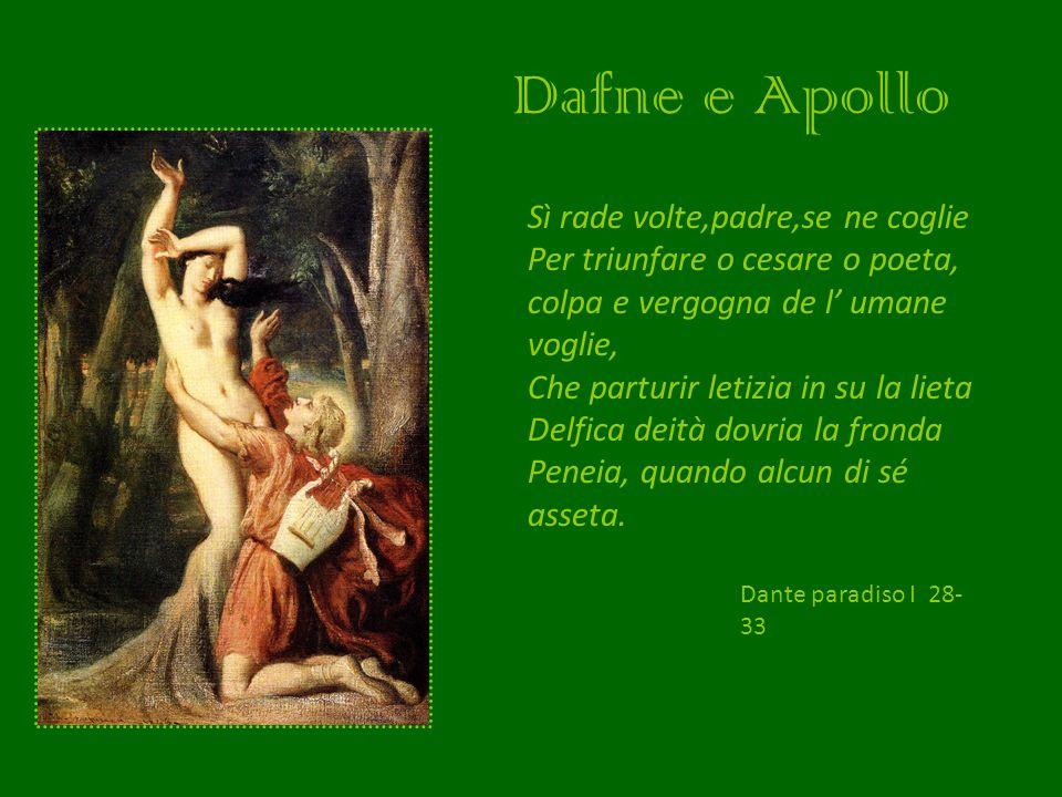Dafne e Apollo Sì rade volte,padre,se ne coglie Per triunfare o cesare o poeta, colpa e vergogna de l umane voglie, Che parturir letizia in su la liet