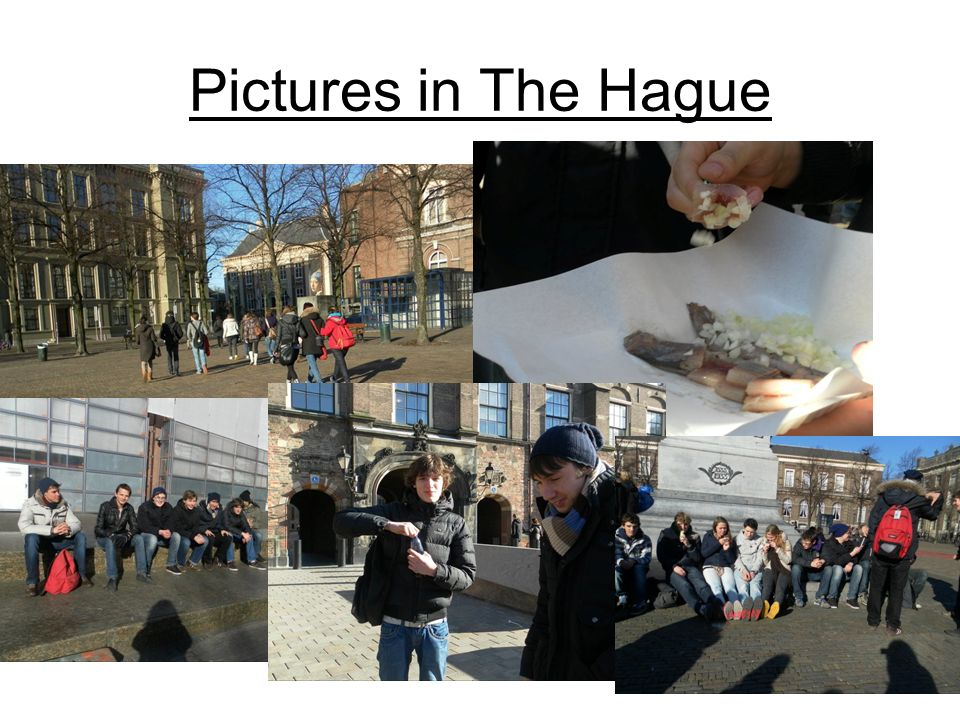 Pictures in The Hague