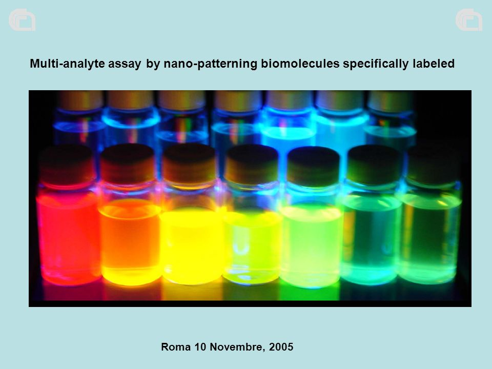 Roma 10 Novembre, 2005 Multi-analyte assay by nano-patterning biomolecules specifically labeled