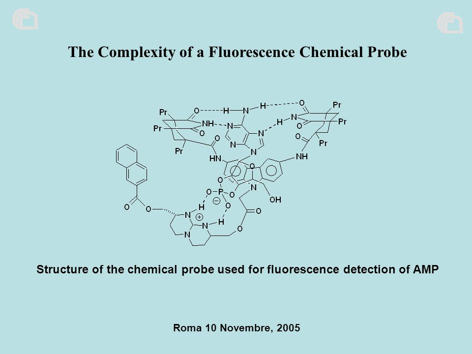 Structure of the chemical probe used for fluorescence detection of AMP Roma 10 Novembre, 2005 The Complexity of a Fluorescence Chemical Probe