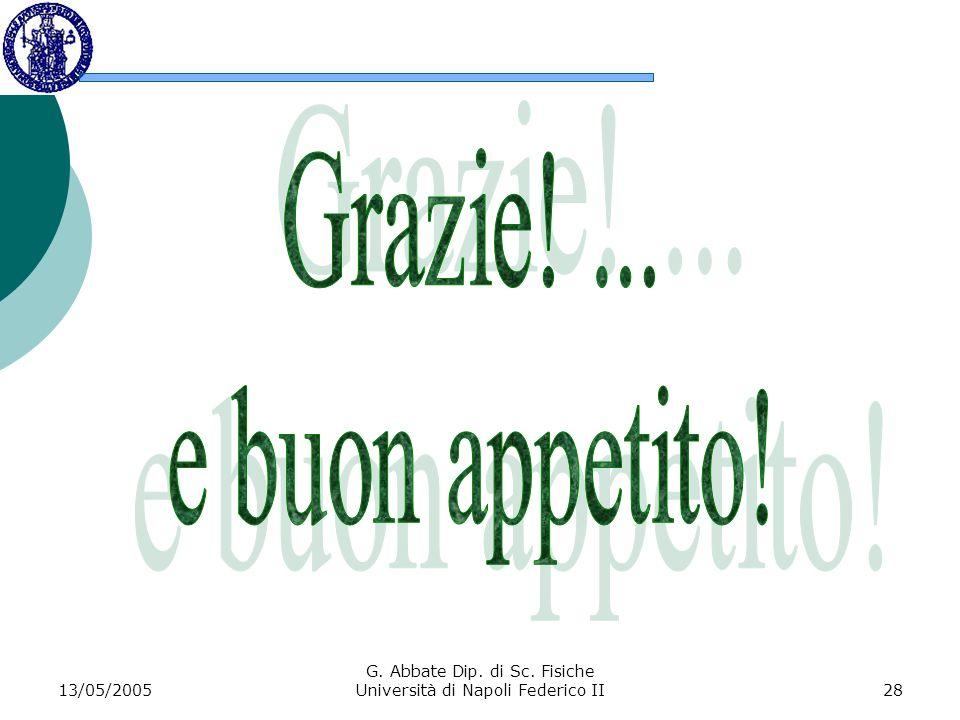 13/05/2005 G. Abbate Dip. di Sc. Fisiche Università di Napoli Federico II28
