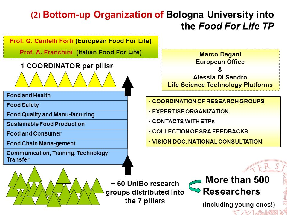 ~ 60 UniBo research groups distributed into the 7 pillars Food and Health Food Safety Food Quality and Manu-facturing Sustainable Food Production Food and Consumer Food Chain Mana-gement Communication, Training, Technology Transfer 1 COORDINATOR per pillar More than 500 Researchers (including young ones!) COORDINATION OF RESEARCH GROUPS EXPERTISE ORGANIZATION CONTACTS WITH ETPs COLLECTION OF SRA FEEDBACKS VISION DOC.