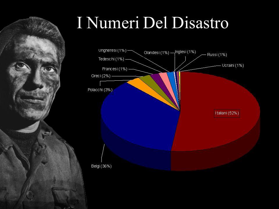I Numeri Del Disastro