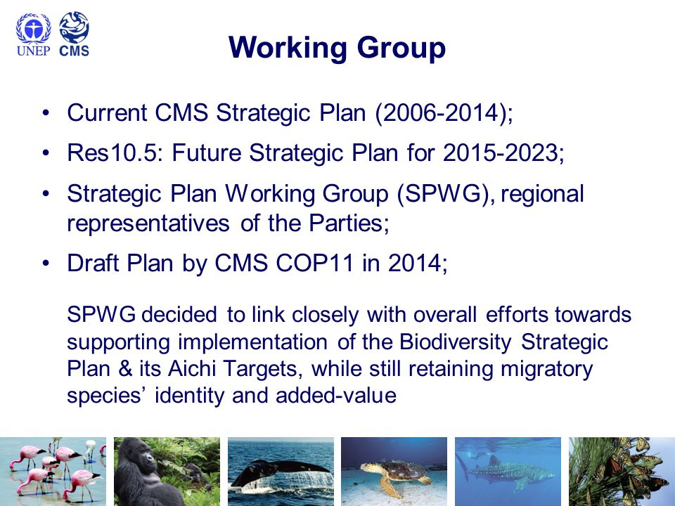 Working Group Current CMS Strategic Plan (2006-2014); Res10.5: Future Strategic Plan for 2015-2023; Strategic Plan Working Group (SPWG), regional repr