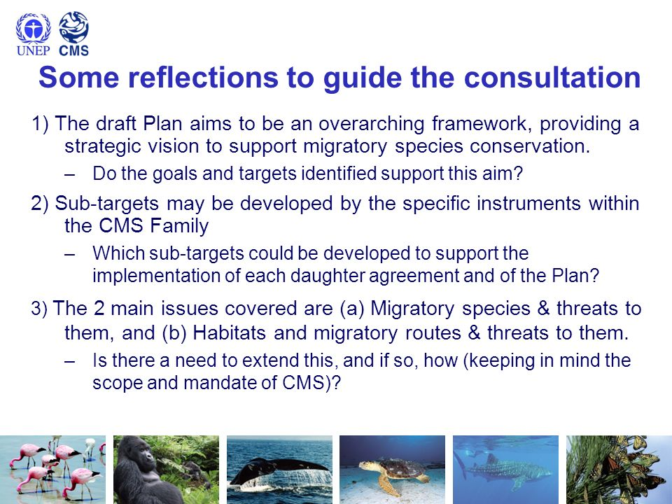 Some reflections to guide the consultation 1) The draft Plan aims to be an overarching framework, providing a strategic vision to support migratory sp