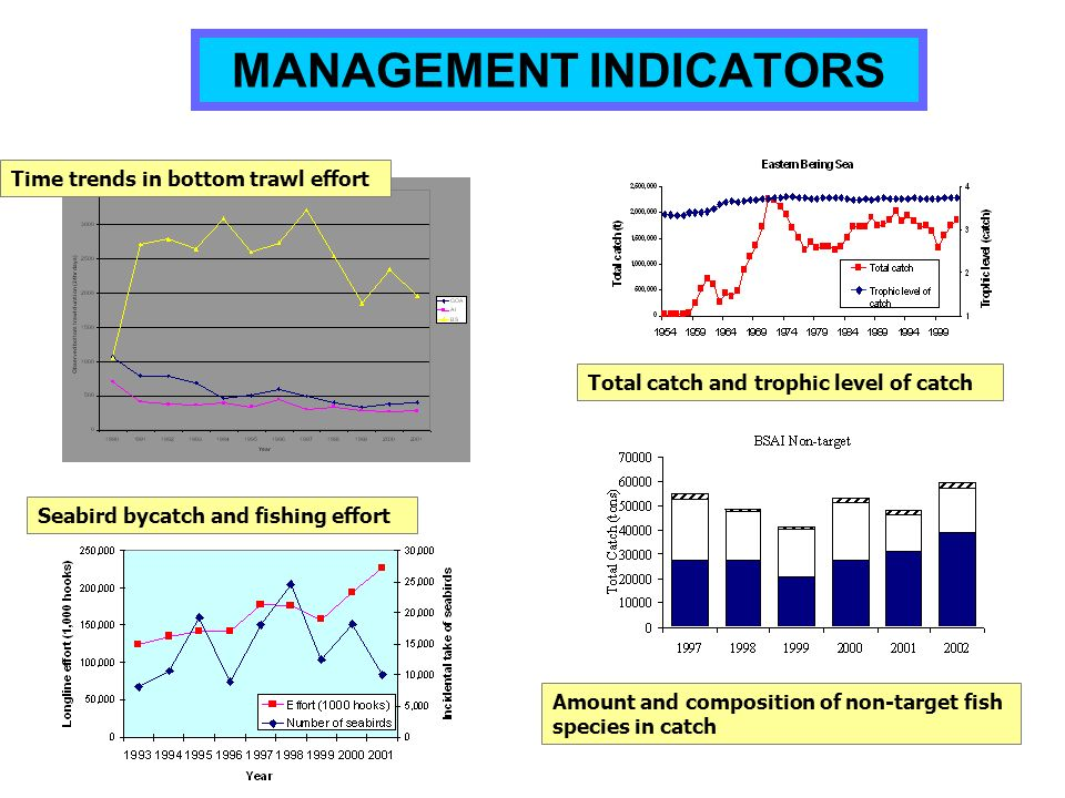 MANAGEMENT INDICATORS Time trends in bottom trawl effort Total catch and trophic level of catch Amount and composition of non-target fish species in c