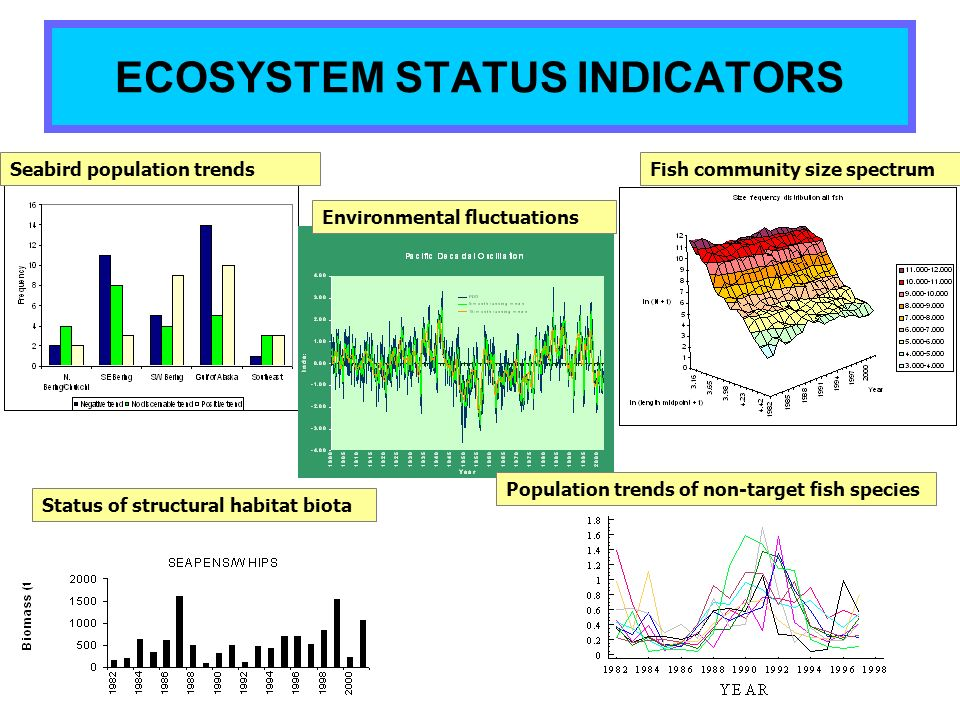 ECOSYSTEM STATUS INDICATORS Fish community size spectrum Status of structural habitat biota Seabird population trends Environmental fluctuations Popul