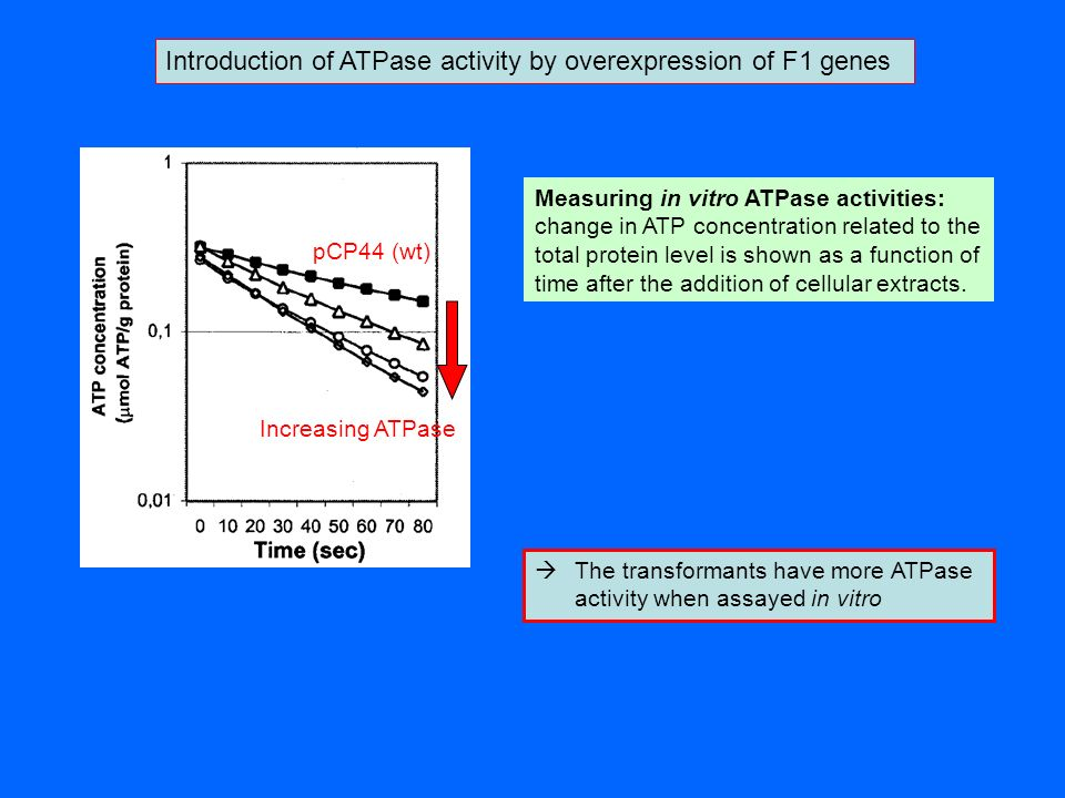 Introduction of ATPase activity by overexpression of F1 genes Measuring in vitro ATPase activities: change in ATP concentration related to the total p