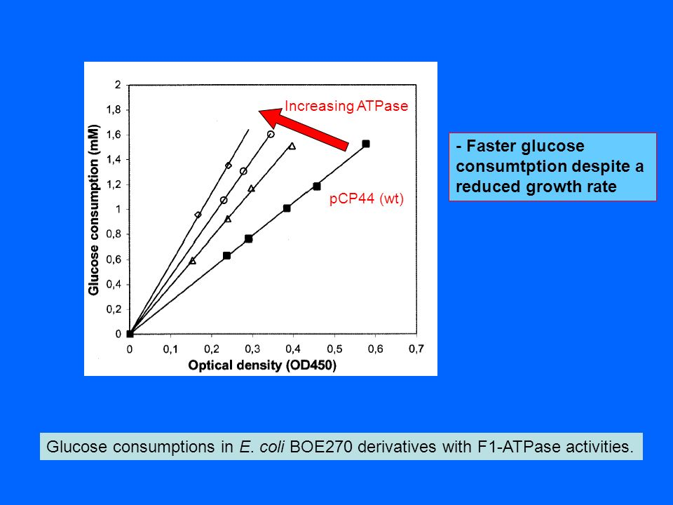 Glucose consumptions in E. coli BOE270 derivatives with F1-ATPase activities. pCP44 (wt) Increasing ATPase - Faster glucose consumtption despite a red