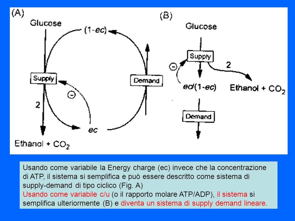 Usando come variabile la Energy charge (ec) invece che la concentrazione di ATP, il sistema si semplifica e può essere descritto come sistema di suppl