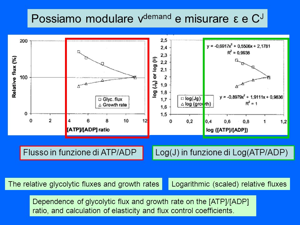 The relative glycolytic fluxes and growth rates Dependence of glycolytic flux and growth rate on the [ATP]/[ADP] ratio, and calculation of elasticity
