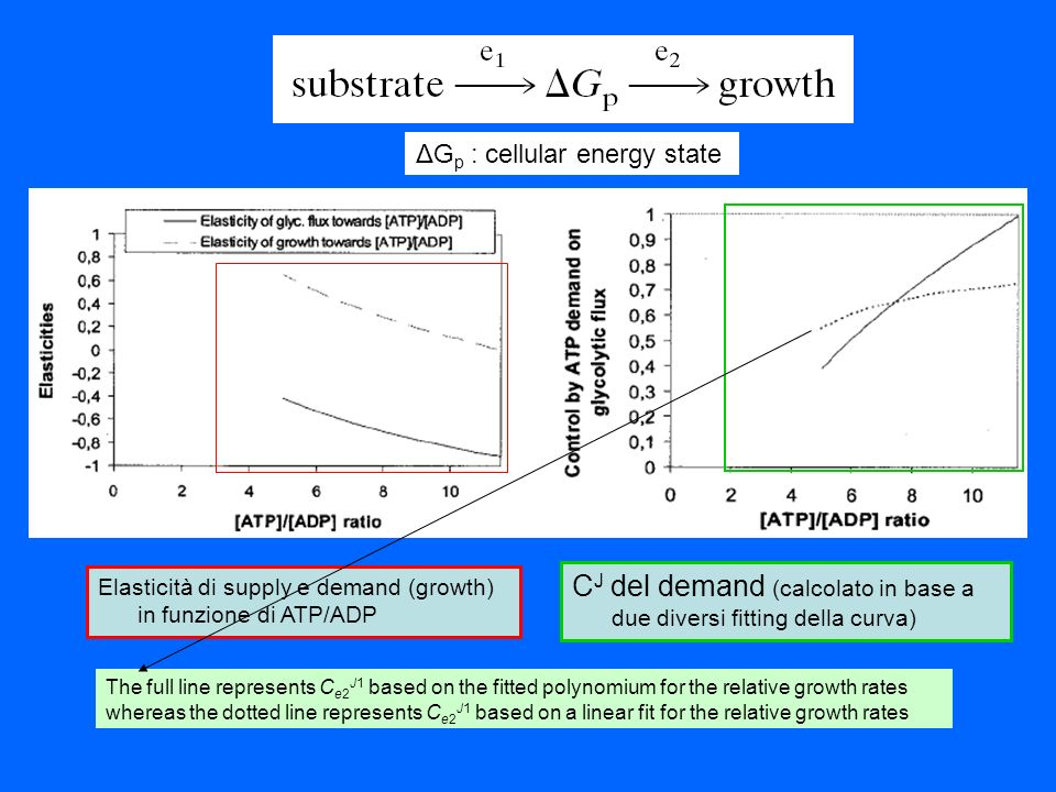 The full line represents C e2 J1 based on the fitted polynomium for the relative growth rates whereas the dotted line represents C e2 J1 based on a li